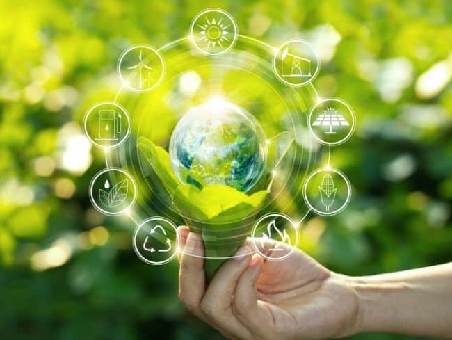 Tips for promoting an eco-friendly policy in the company